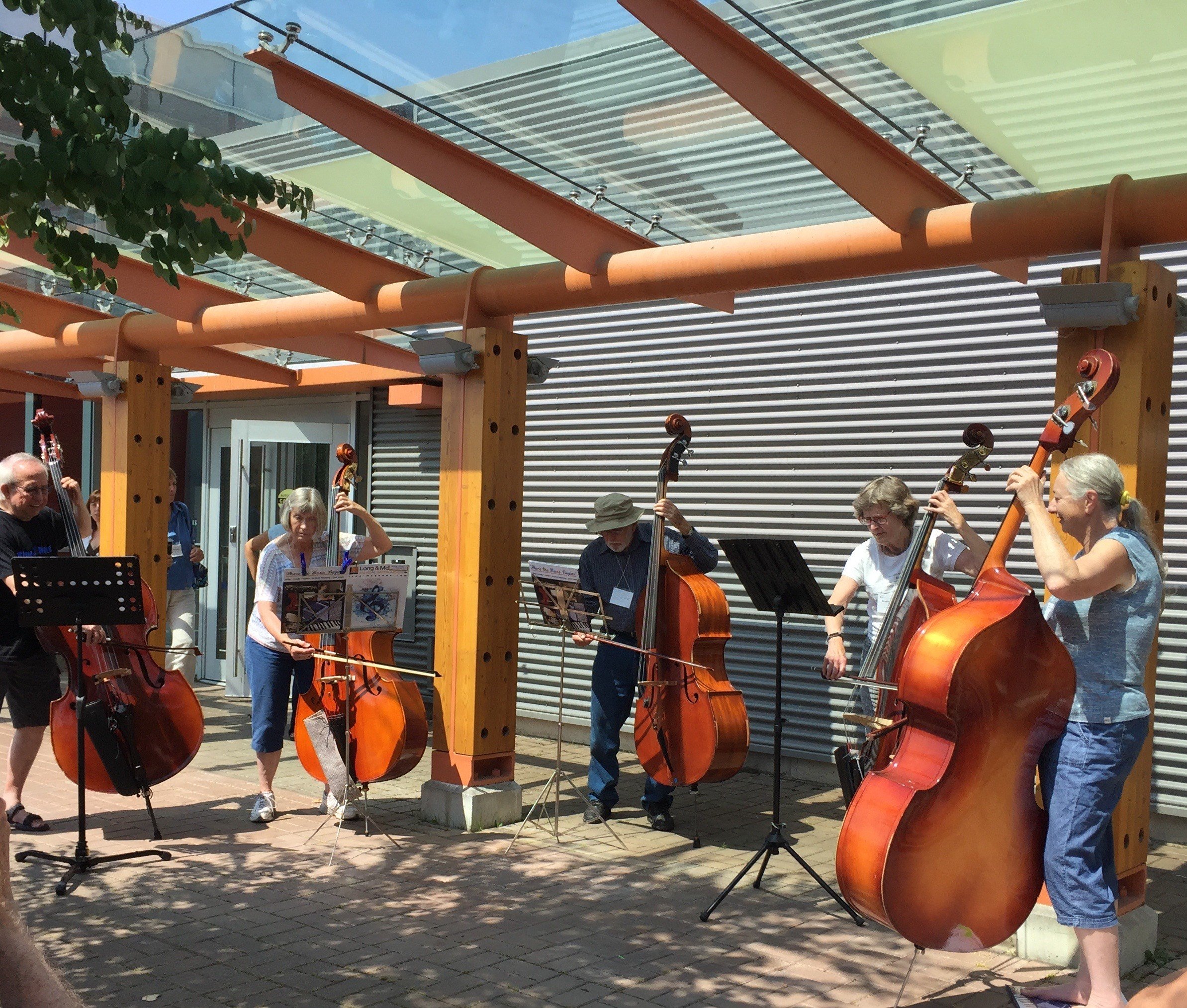 Adults playing double bass on a sunny patio